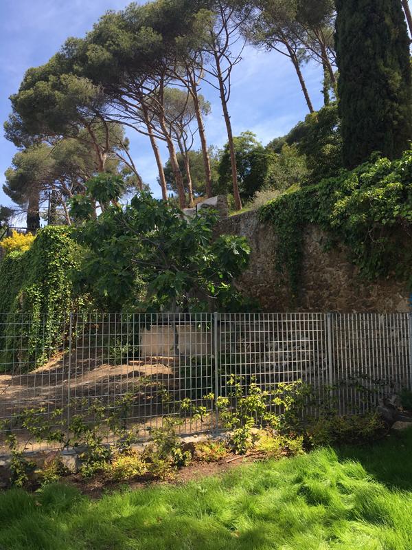 Jardín en Caldetes por De Buena Planta