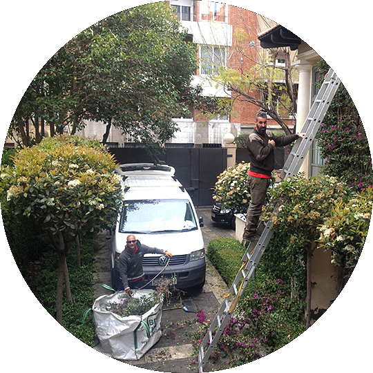 mantenimientos-jardines-de-buena-planta-redonda