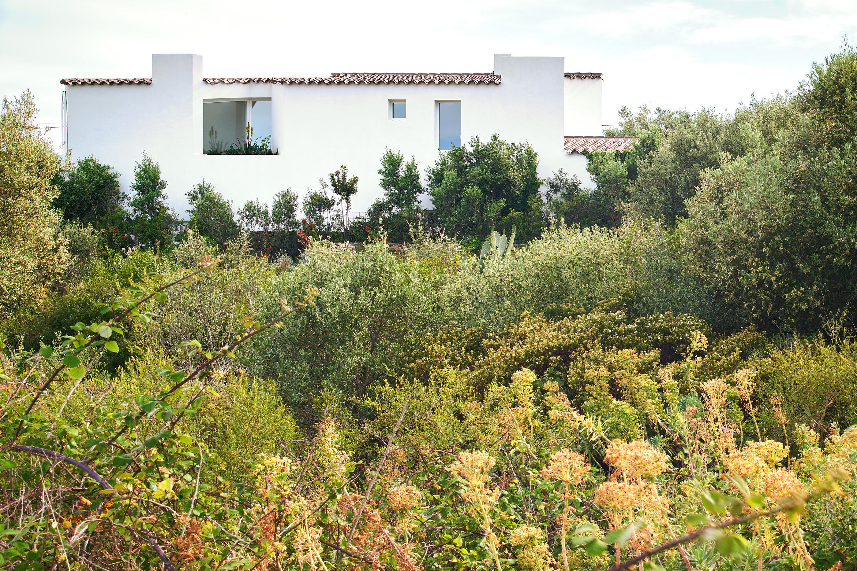 Jardinería de Vivienda en Cadaqués