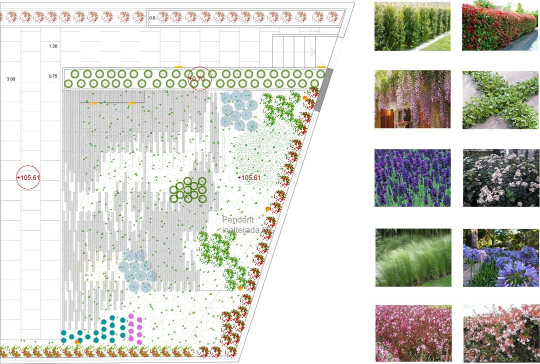 Construcción de un jardín en Sant Cugat por De Buena Planta