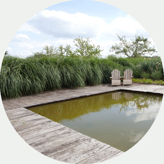 diseno-jardines-de-buena-planta-1-fondo